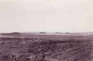 Gammelt bilde som viser noen av gravhaugene på Reheia. Reheia blir også kalt Blodheia fordi det i 953 skal ha stått  et slag mellom Håkon den gode og sønnene til Eirik Blodøks.