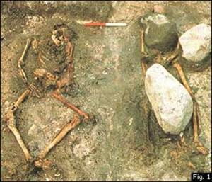 Dobbeltgrav fra Gerdrup; Danmark (1981). Til venstre, en mann som ligger med sammenbundne hender og føtter. Han er trolig en mannlig slave som ble ofret. Til høyre ligger en kvinne gravlagt med spyd og kniv. (Christensen & Bennike 1983)