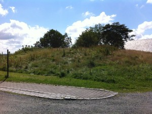 """"""" Cow's mound"""", just above Nordvegen History Center, has received its name because people believed Augvald's sacred cow was buried here. The burial mound is also called"""