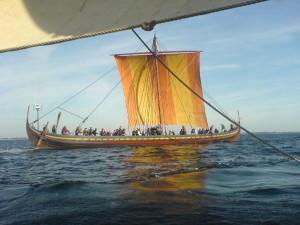 Havhingsten, rekontruksjon av Skuldelev II. 30 m lang og  3.8 m bred. Er trolig det som sagaene kaller en skeið. Foto Terje Andreassen)