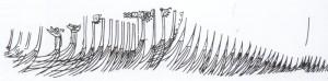 Skipsristning fra Bryggen i Bergen Ristningen kan være en øyenvitne skildring av Håkon Håkonssons flåte i Bergen, 1233. Håkon har innkalt Skule jarl til forhandlinger, og har stilt opp skipene sine mens han venter på jarlen. Vi ser to drakeskip og andre store leidangsskip.